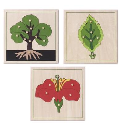 montessori botanische puzzle