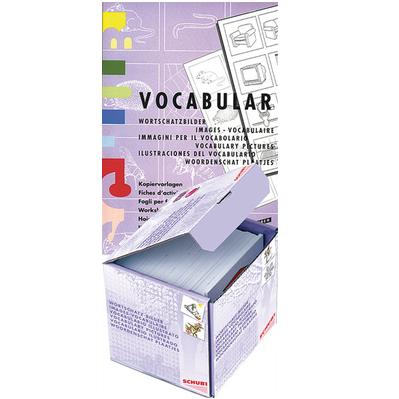 SCHUBI VOCABULAR Bilderbox mit Kopiervorlagen